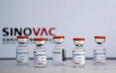 سائنوویک ویکسین سنگین بیماری کے خلاف انتہائی مؤثر ثابت