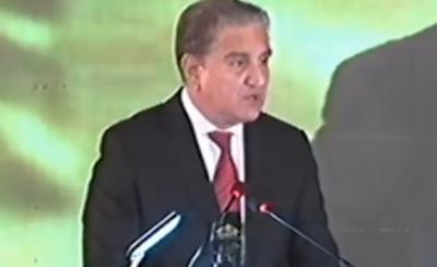 جرمن سرمایہ کار پاکستان میں سرمایہ کاری کے پرکشش مواقعوں سے فائدہ اٹھائیں: وزیر خارجہ شاہ محمود قریشی