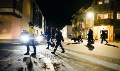 ناروے میں مسلح شخص نے تیر کمان سے حملہ کرکے 5 افراد کو ہلاک کردیا