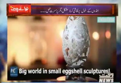 چین میں انڈوں کے Shell پر مجسمے بنانے والا آرٹسٹ۔۔